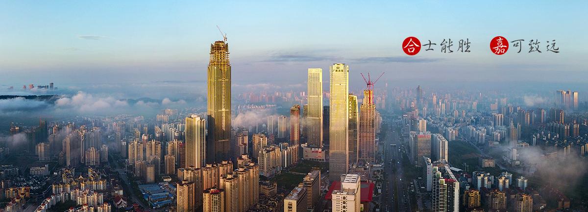 广西工程造价咨询_广西工程项目管理_广西工程招标代理